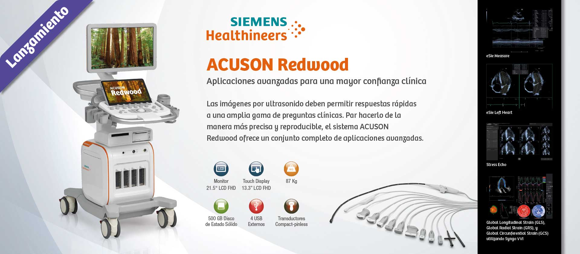 Siemens Acuson Redwood